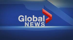 Global News at 5: Nov 5 Top Stories