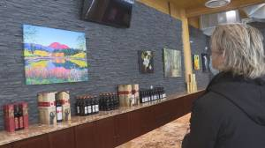 Artists team up with Okanagan winery to raise funds for mental health (01:43)