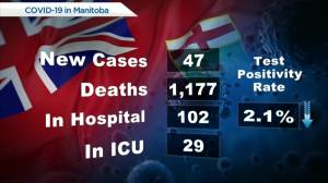 Manitoba's COVID-19/vaccine numbers – July 29 (00:47)
