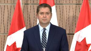 Coronavirus outbreak: Scheer addresses COVID-19 outbreak at Cargill meat-packing plant