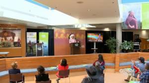 Lethbridge College unveils new Indigenous strategy (01:48)