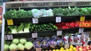 Canadian families are paying more to fill their grocery carts (01:44)