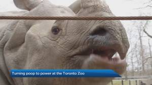 Turning poop into power at the Toronto Zoo