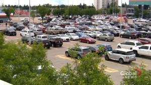 Police warn of organized crime gangs running 'scary' scams in Alberta parking lots