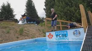 Vancouver Island's first dog dock diving centre (02:08)