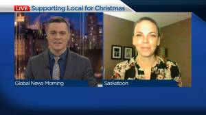 Tourism sector partners to promote local holiday shopping (03:43)