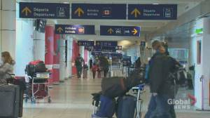 Coronavirus: Travel agents join growing calls for greater financial support amid new restrictions (02:21)