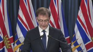 Health minister on '100-per-cent commitment' from B.C. to fight COVID-19