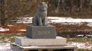 Cemetery in Laval offers pet owners a chance to be buried with their animal companions (02:06)