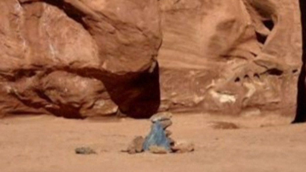 Click to play video 'Mysterious monolith in Utah desert disappears'