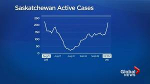 Saskatchewan health officials report 48 coronavirus infections