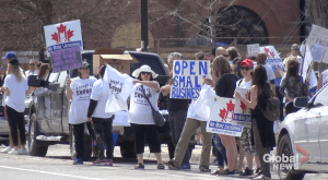 Up to 250 gather at Peterborough park to protest Ontario stay-at-home order (03:09)