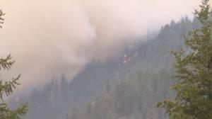 B.C. crews battle Nk'Mip Creek fire, as 250+ fires burn in province (02:19)