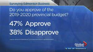 Business community weighs in on Alberta budget