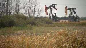 Insolvency leads to 5 times as many orphan wells to seal in Saskatchewan (01:54)
