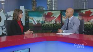 'Look very closely at what you think are the most important issues': Lori Williams on upcoming federal election