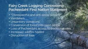 Vancouver Island First Nation condemns anti-logging protestors (01:58)