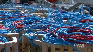 N.S. company hoping to change ghost gear scrapping process (01:54)