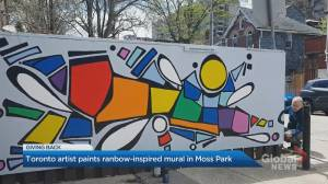 Toronto artist paints street mural to brighten up COVID-19 hot spot neighbourhood (01:58)