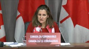 Coronavirus outbreak: Freeland says travellers coming back to Canada will be forced to isolate