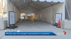Coronavirus: Health official suggests public needs to take more responsibility for testing