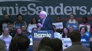 Sanders says low voter turnout in Iowa caucuses will translate to Democrat loss in 2020