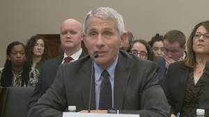 Coronavirus outbreak: Dr. Anthony Fauci says the U.S. will not have COVID-19 vaccine in under a year