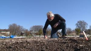 Ajax community gardeners call on premier to ease restrictions