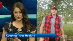 Keeping your trees healthy with gardening expert Carson Arthur