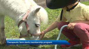 Therapeutic farm in Kelowna starts membership program