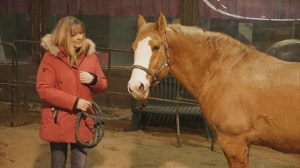 FULL STORY: Horse Therapy