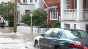 Wildrose flood plan