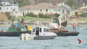 Oak Bay marina cleans up illegal mooring vessels