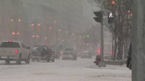 Snow storm hits Winnipeg