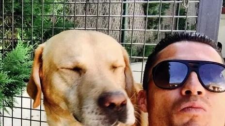 Cristiano Ronaldo Selfie With A Shy Dog GQ