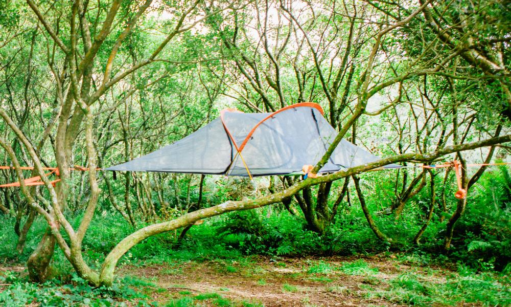 Tentsile tree tents are slung between tree trunks several feet above ground, Kudhva, Cornwall
