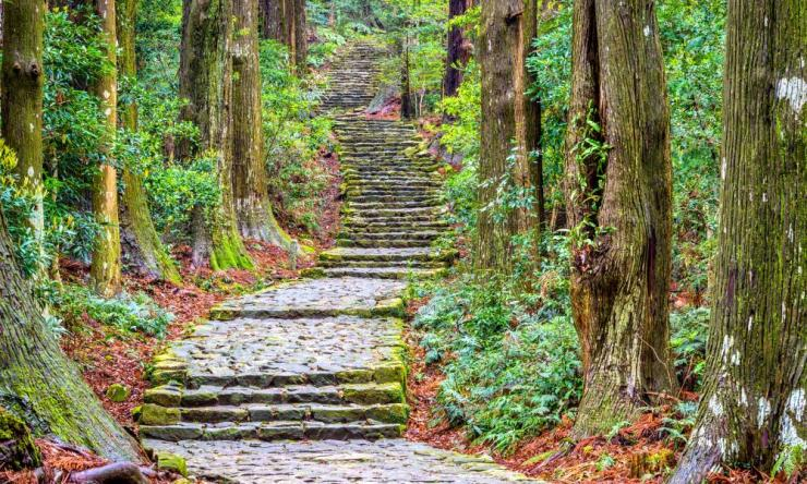 The Daimonzaka pathway to the Nachi shrine.