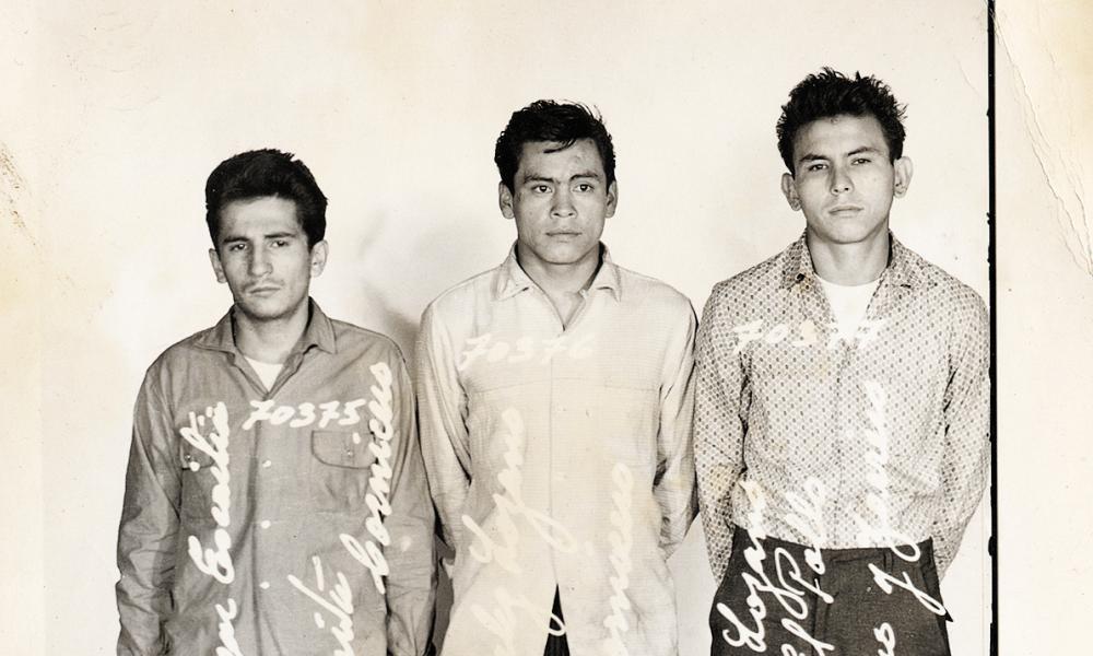 Trio of crooks.