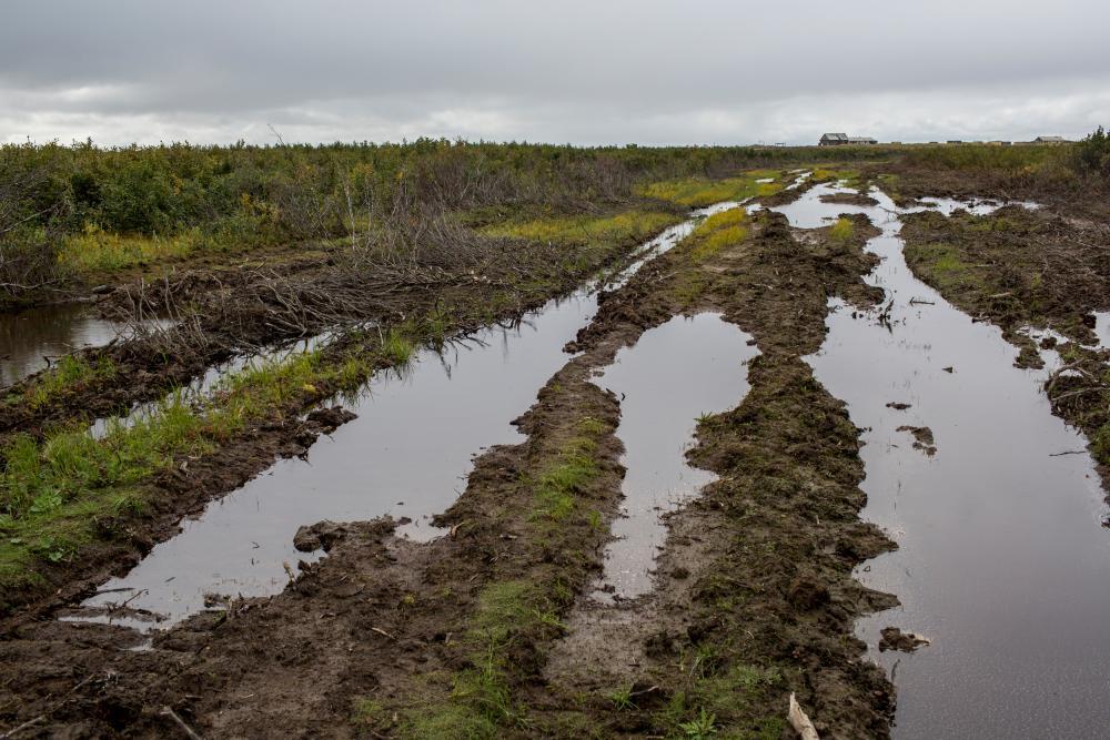 Tundra torn up by heavy tank tread vehicles near the Tanalau terminal construction site.