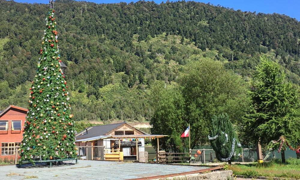 Christmas tree in village of Puyuhuapi, Carretera Austral, Patagonia