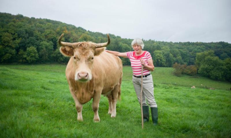 Rosamund Young writes about cows as though they were in a novel: 'She looked after him of course but was visibly relieved when he went off to play with his friends.'
