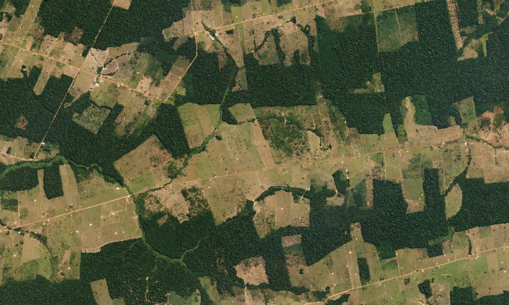 Forest and Fields, Brazil July 18, 2016 Farms and pastureland carve their way into tropical forestland in the Western Brazilian State of Rondônia. The state is one of the Amazon's most deforested regions.