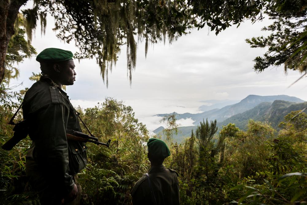 Rangers in Virunga national park. Last month, five rangers and a driver were killed in an ambush.