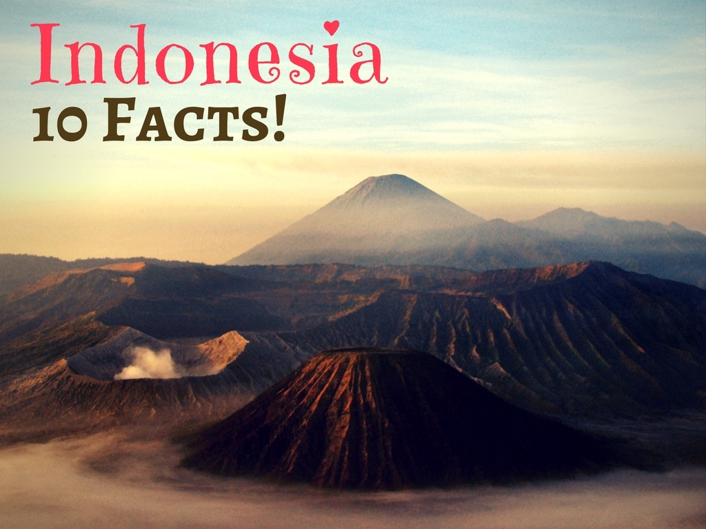10 Facts You Didn T Know About Indonesia Halaltrip