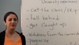 اصطلاحات کاربردی در دانشگاه، کالج و مدرسه