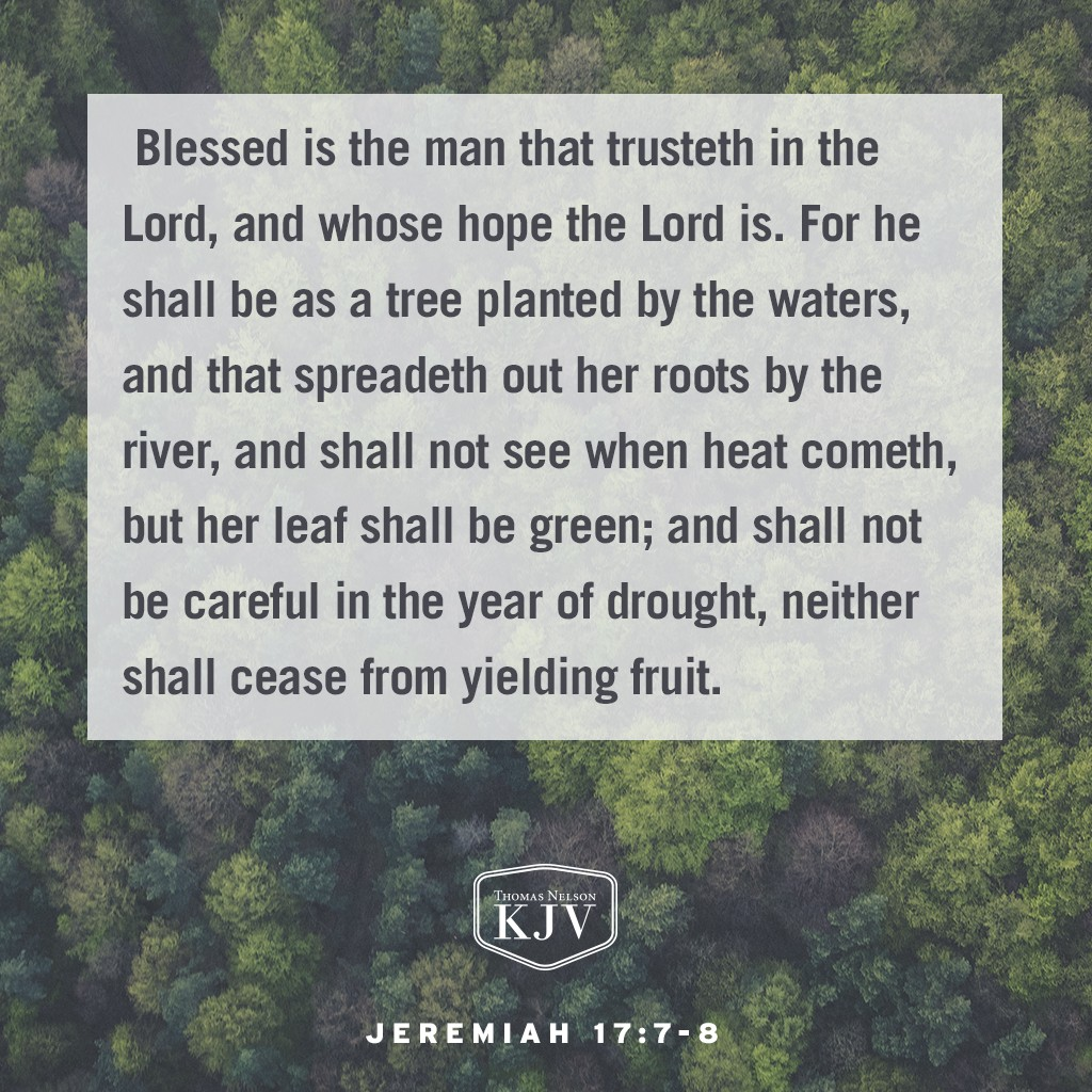 7 Blessed is the man that trusteth in the Lord, and whose hope the Lord is. 8 For he shall be as a tree planted by the waters, and that spreadeth out her roots by the river, and shall not see when heat cometh, but her leaf shall be green; and shall not be careful in the year of drought, neither shall cease from yielding fruit. Jeremiah 17:7-8