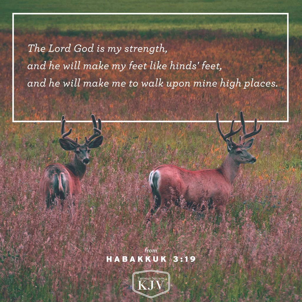 19 The Lord God is my strength, and he will make my feet like hinds' feet, and he will make me to walk upon mine high places. To the chief singer on my stringed instruments. Habakkuk 3:19