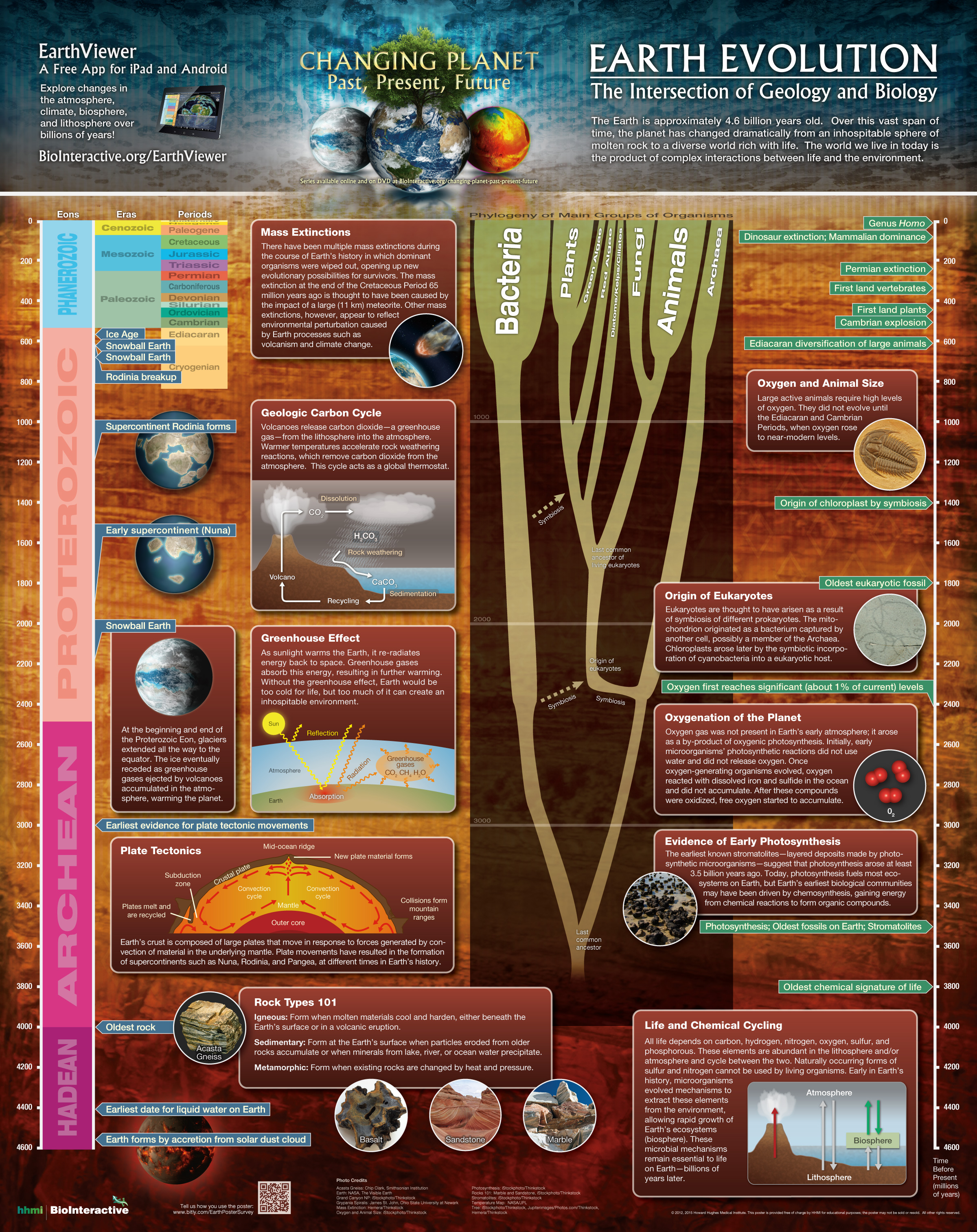 Poster Earth Evolution
