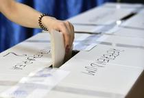 Alegeri europarlamentare 2019 și referendum