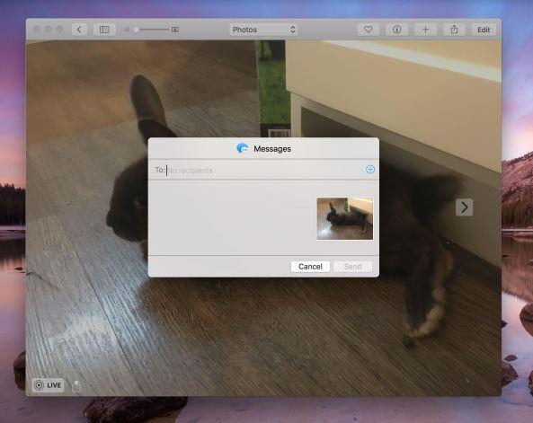 OS X El Capitan Photos Live Photos share menu Mac screenshot 002